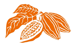 orange-cocoa-pod-no-background.png